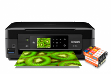 изображение Epson Expression Home XP-434